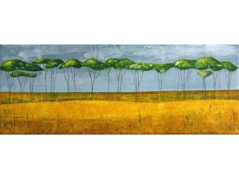 Morag smith tall trees at catterline