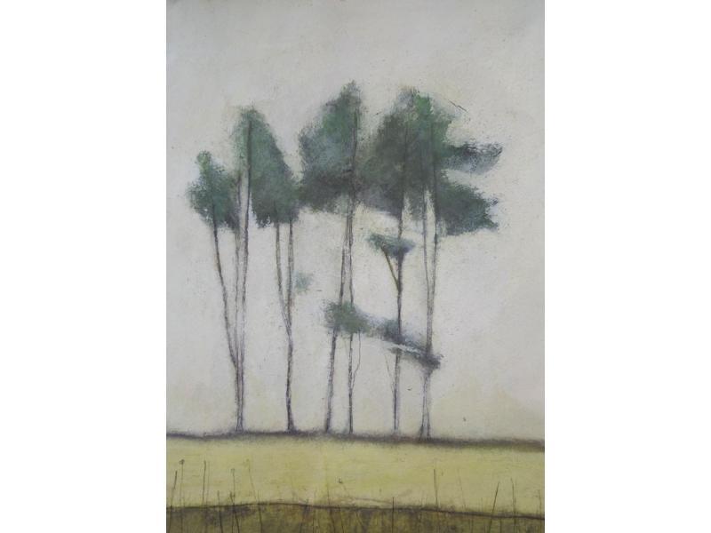 Morag Smith Dunnottar Trees
